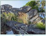 Grey Rocks by LilyStox
