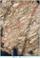 Stone Texture 5 by LilyStox