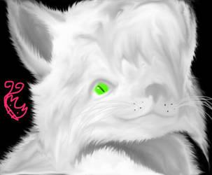 Cat  by ChangelingButterfly