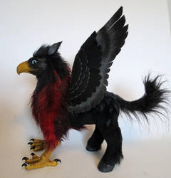 Hippogriff by kimrhodes