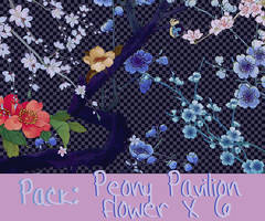PACK FLOWER X 6 : Peony Pavilion by NanaBahamon