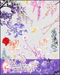 Pack-chinese by NanaBahamon