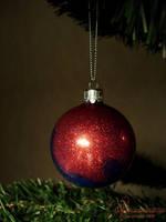 Christmas ornament: Gunnel by petrova