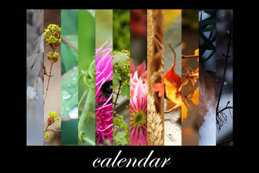Nature Calendar by petrova