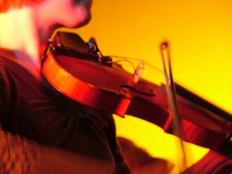 The violin by petrova