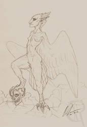 Harpy Sketch by CaseyAlexandra