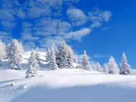 snow paradise by mareika