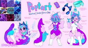 Poptart Cat Reference {DONUT STEAL} by MoggieDelight