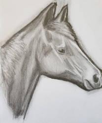 10minute Pony by IamDogged