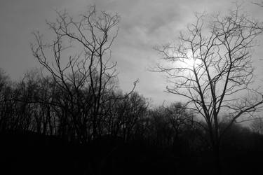 Trail by CityWavePhotography