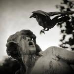 the raven by anjelicek