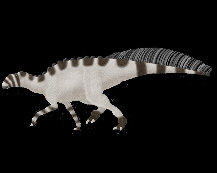 Gryposaurus monumentensis by PrimevalRaptor