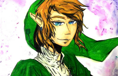 Link! by lullabyly