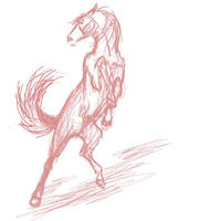 Horse Shying by Koeyohte