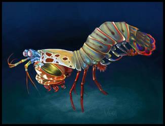 mantis shrimp by Blattaphile