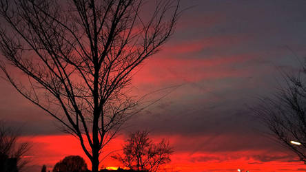 Sky on fire by JanuaryGuest