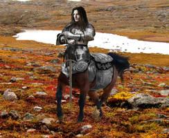 Centaur Knight by Elephant883
