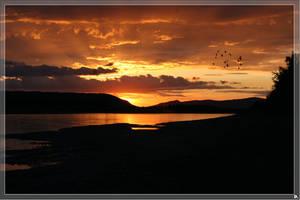 Alaska,Yukon River by Dimon101