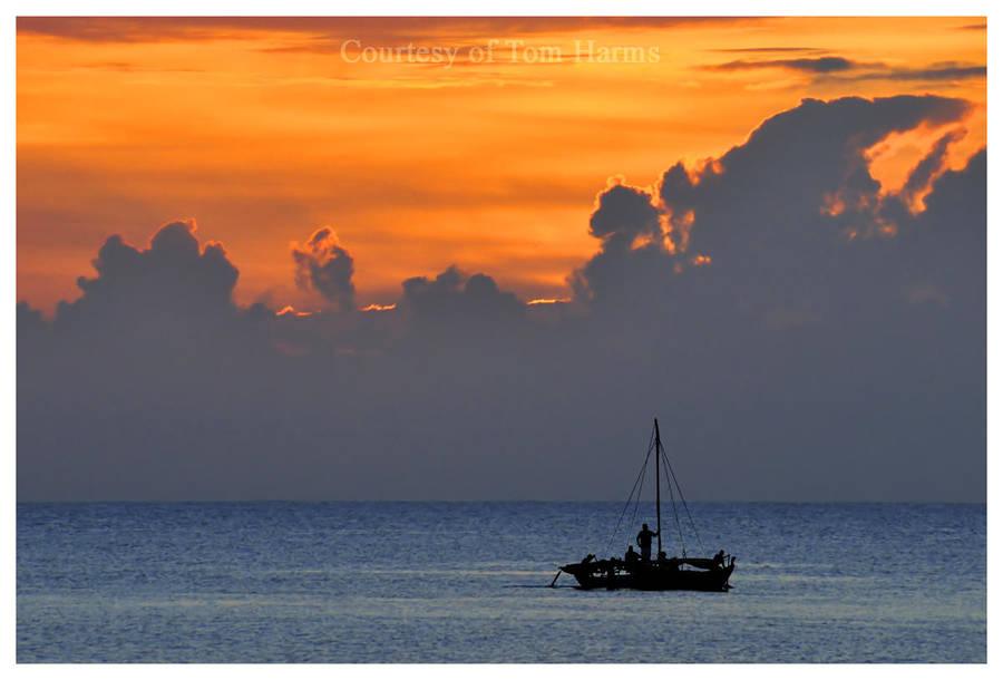Twilight Trawl by acutely