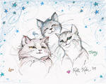Devon's Trio by Schlady