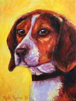 Sunny Beagle by Schlady
