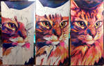 Galaxy Cat WIP by Schlady