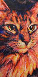 Galaxy Cat by Schlady