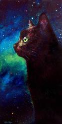 Galaxy Cat II by Schlady