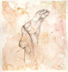 Feet Study by Schlady