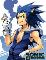 Needlemouse: Sonic by mazjojo