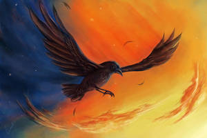 Flight of the Raven by Casselloma