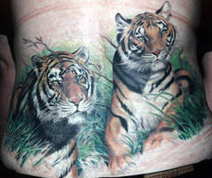 lower back Tigers by claudiatat2