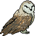 Mini barn owl by FlyingGuardianFish