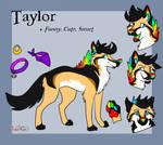 Taylor by xRubyCayx