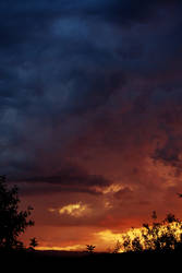 Days of Thunder by bembulak