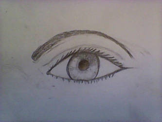 Realistic Eye Sketch/Practice by goblaze