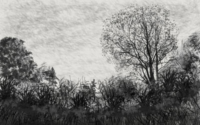 Trees-10-2-17 by scarbear06