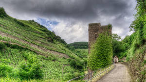 Mosel Impressions [06 of 12] by 00Michael00A