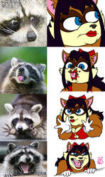 Rebbuary: Faces by ronnieraccoon