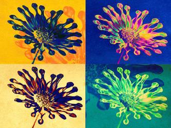 Flower funk by digitalxdefiant