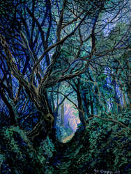 Blue Forest Path by cirruscastle
