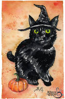 Catwitch I by bcduncan