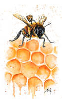 Clockwork Bee I by bcduncan