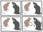 Rat Staring Contest by KitschyDuck