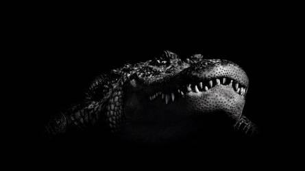 crocodile by PkufeIgiglf
