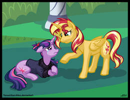 Amending Different Fences by TexasUberAlles