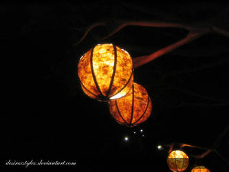 Disneyland Orange Lantern by desirexstylez