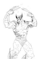 The Wolverine by urbantrixsta