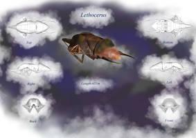 Ship Design - Lethocerus by Haematite