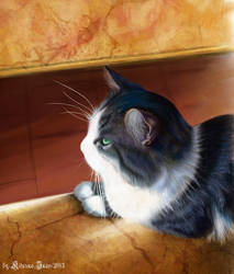 Cat Kuzma by Kitsune-Inari-sama
